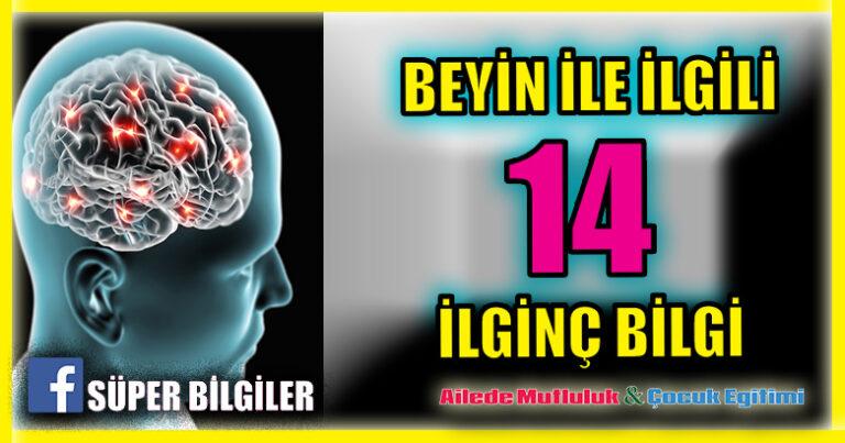 Beyin ile İlgili 14 İlginç Bilgi