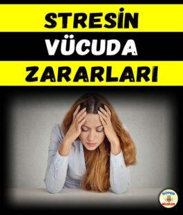 Stresin Vücuda Zararları